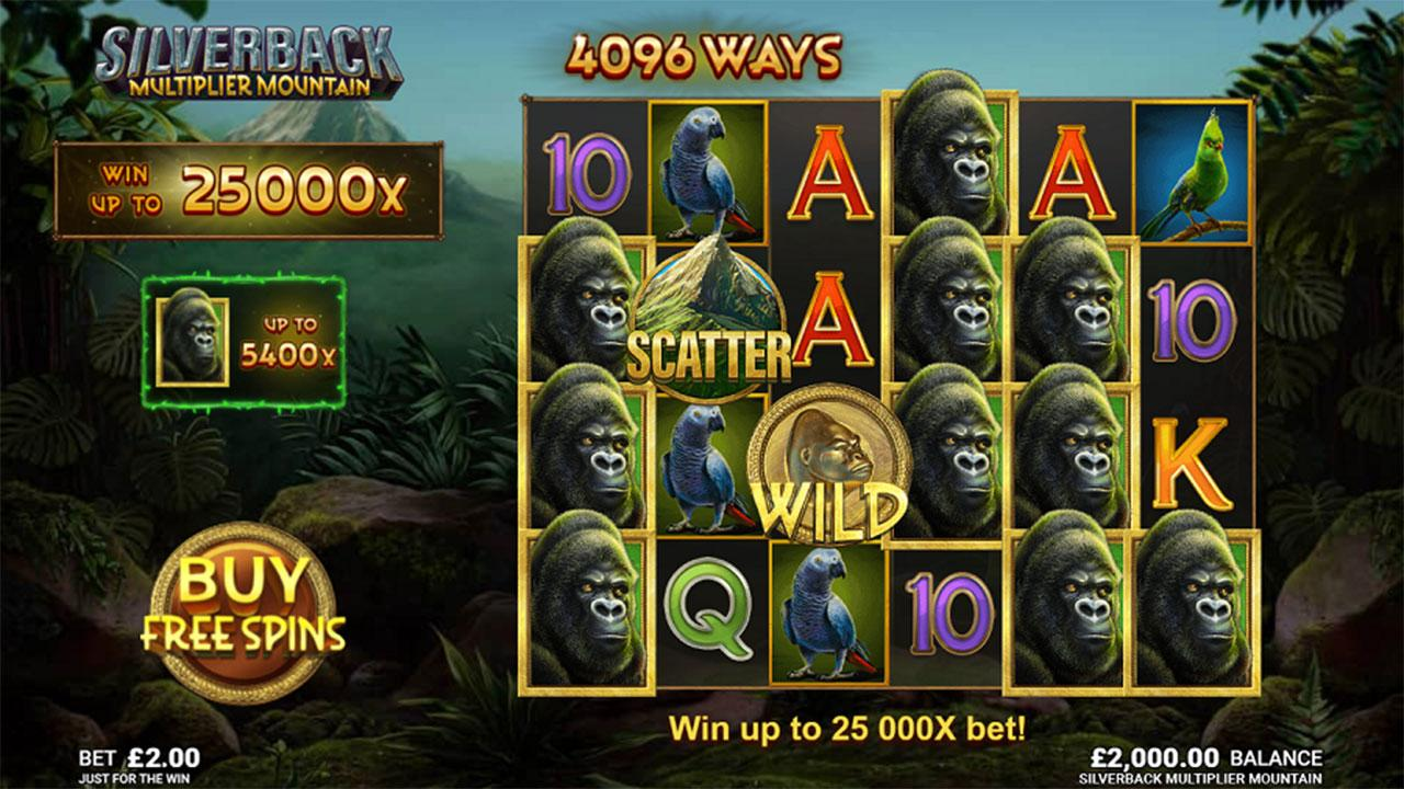 Play Silverback and Multiplier Mountain: WIN 100