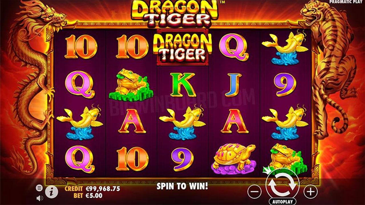 Play Dragon Tiger and WIN 100