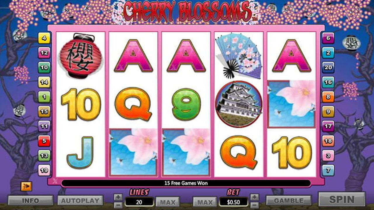 50 Free Spins on Cherry Blossoms at Miami Club (sp79)